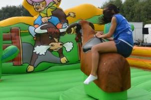 Rodeo stier huren